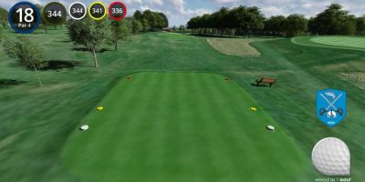 WholeInOneGolf-Hole-18