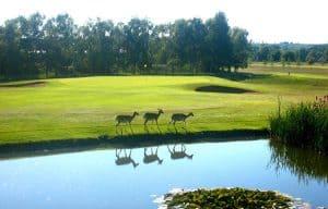 Belton Park Golf Club